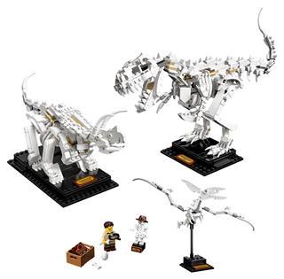 LEGO 21320 - LEGO Ideas - Dinoszaurusz maradványok