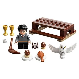 LEGO 30420 - LEGO Harry Potter - Harry Potter és Hedwig
