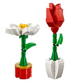 LEGO 40187 - LEGO Classic - Tavaszi virágok