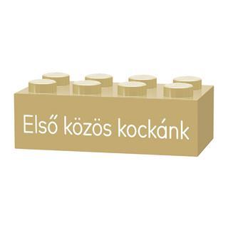 LEGO GLK043 - LEGO gravírozott kocka - Első közös kockánk (homoksz...